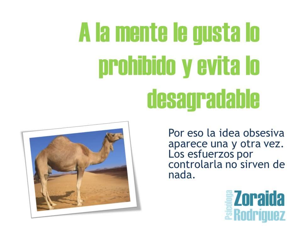 204_articulo162_ideal_obsesivo_compulsivo_toc_4